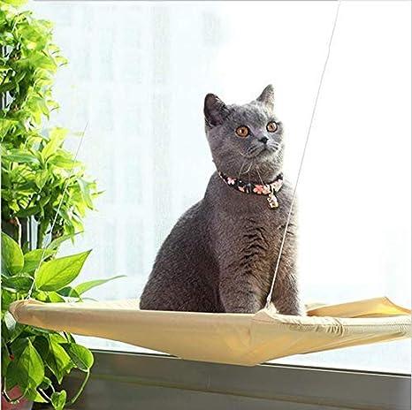 Freyamall Hamaca para Gato, Percha de Ventana para el baño ...