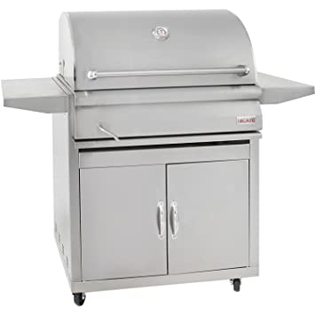 Blaze 32 Inch Stainless Steel Charcoal Grill On Cart With Adjustable  Charcoal Tray   Blz