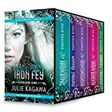 Iron Fey Series Volume 1: The Iron King\Winter's Passage\The Iron Daughter\The Iron Queen\Summer's Crossing (The Iron Fey)