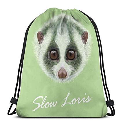 Bolsas de Viaje portátiles lentas de Loris Organizador de ...