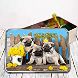 Personalised Cute Pug Puppies St055 Sewing Tin Kit ~ Needles/buttons/Cotton ~ Storage Box Gift by Krafty Gifts