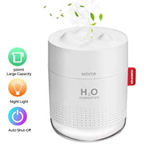 Portable Mini Humidifier, 500ml Small Cool Mist Humidifier with Night Light, USB Personal Desktop Humidifier for Baby Bedroom Travel Office Home, Auto Shut-Off, 2 Mist Modes, Super Quiet, White