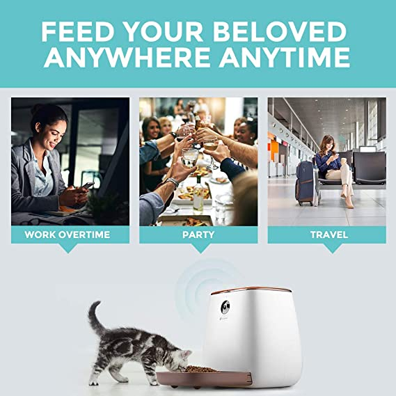Amazon.com : Houzetek Automatic Pet Feeder Dog Dispenser, Cat Food Dispenser with Voice Recording, Features Distribution Alarms, Portion Control and Timer ...
