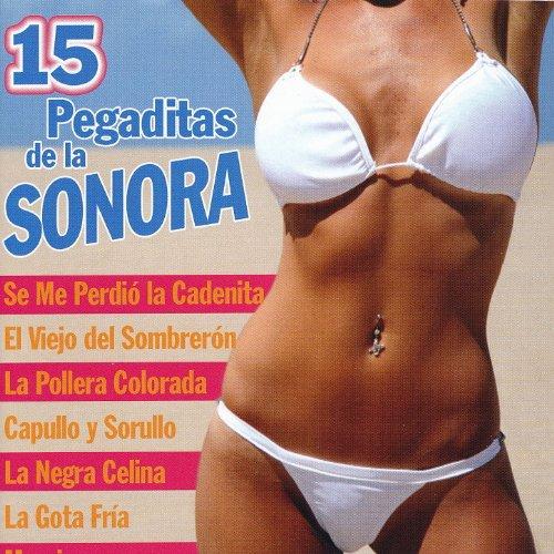 ... 15 Pegaditas de la Sonora