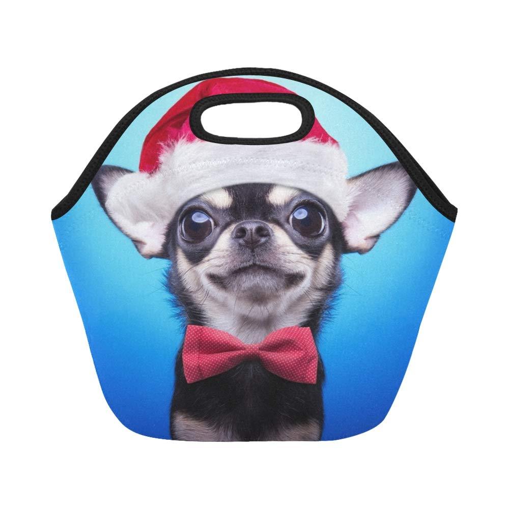 El traje elegante de la Navidad del perro del neopreno aisló ...