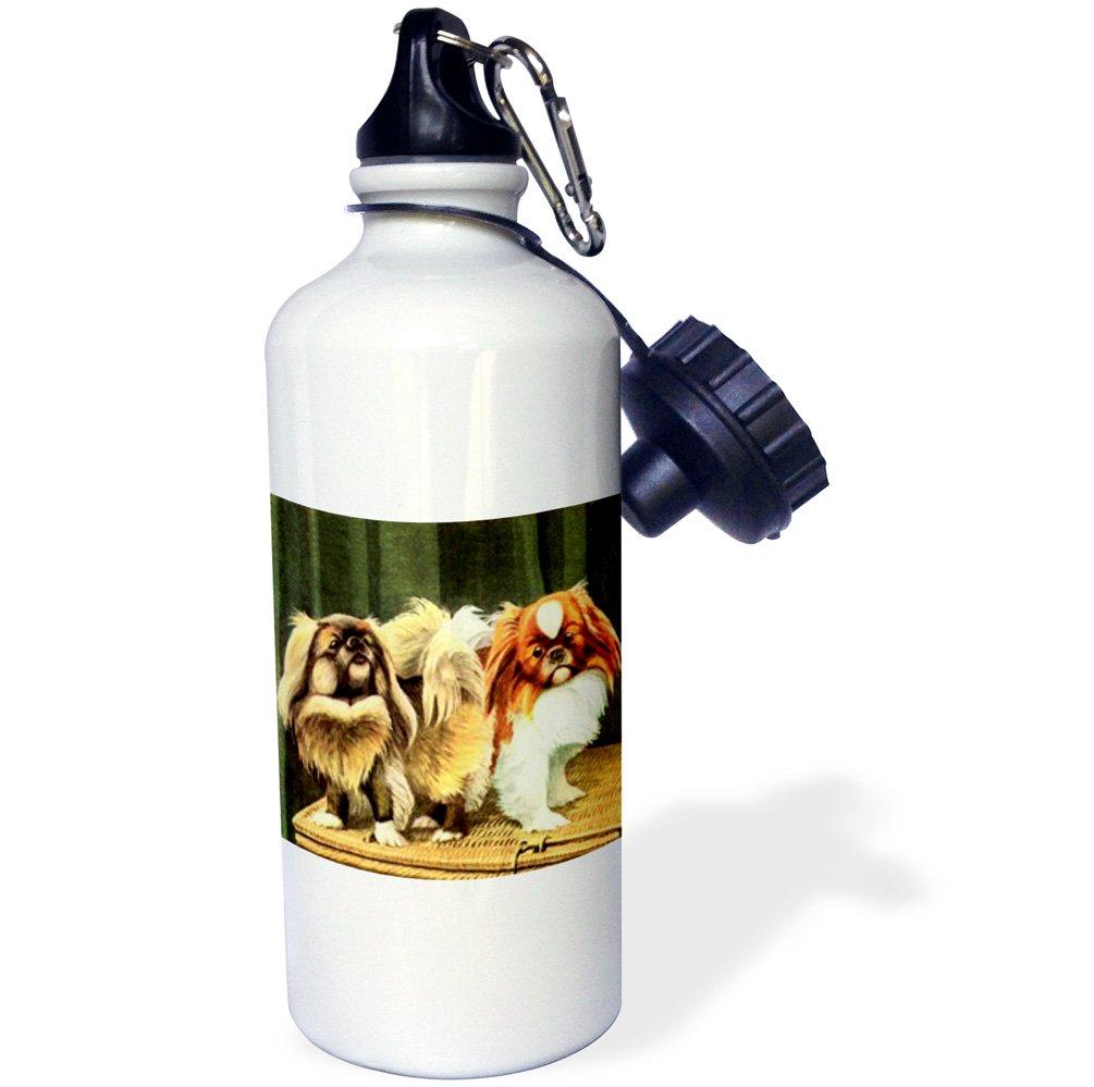 21 oz 3dRose wb/_906/_1Pekingese Sports Water Bottle White