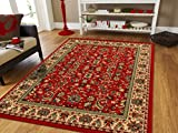 AS Quality Rugs Red Persian Rugs for Living Room 5×8 Red Rugs for Bedroom & Office Rug Reds Green, Cream, Black Area Rugs 5×7 Clearance under 50