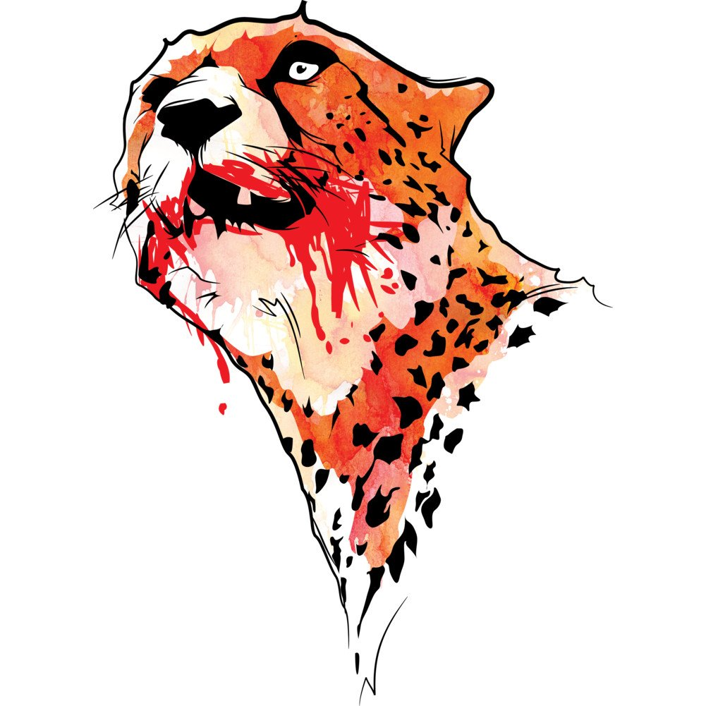 CHEETAH Girls Youth Graphic T Shirt Design By Humans
