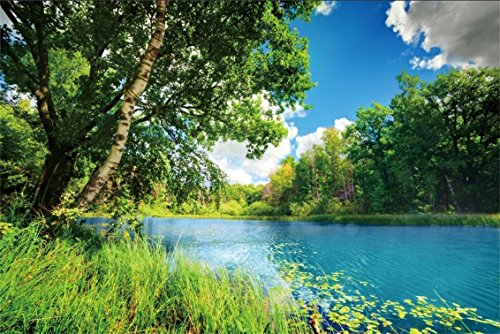 CSFOTO 5x3ft Background for Natural Scenery Photography Backdrop River Blue Water Sunny Forest Park Blue Sky Outdoors Picnic Leisure Walk Summer Spring Scene Photo Studio Props Polyester Wallpaper