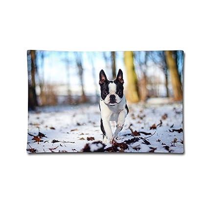 Amazoncom Jingclor Pillow Covers 20x30 Cute French Bulldog Art