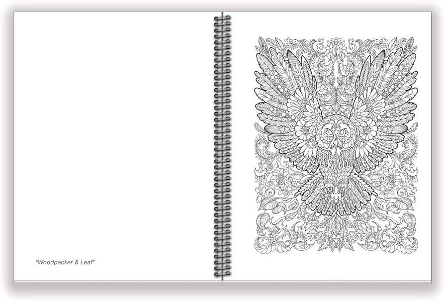 6.625 x 9 inches Garden Paths /& Forest Trails /· Action Publishing Coloring Book