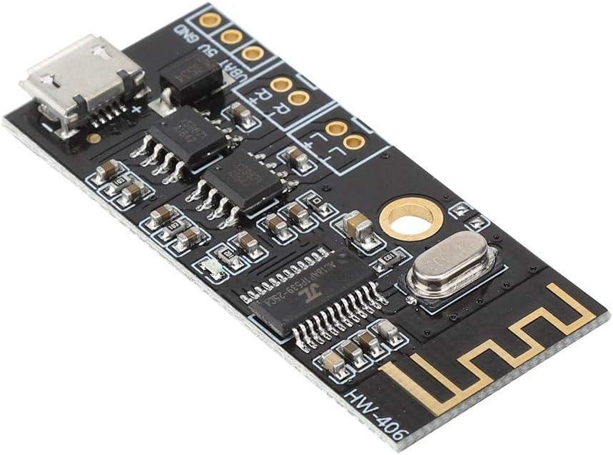 HW-406 Bluetooth 4.2 Audio St/ér/éo sans Fil Haut-Parleur R/écepteur Module Amplificateur de Puissance Delaman Module Audio Bluetooth