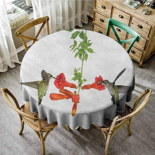 Tassel Tablecloth Hummingbirds Two Hummingbirds Sipping Nectar from a Trumpet Vine Blossoms Summertime Red Black Green Wedding Round Tablecloth Diameter 60""
