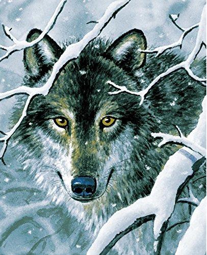 ブランド新しい。5ポンド。Wild Wolfソフト韓国スタイルミンク毛布(クイーンサイズ78 x 92
