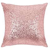 img - for Pony Dance Decorative Solid Throw Pillow Cover 18