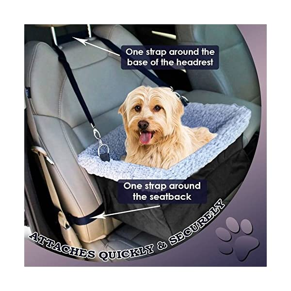 Clip-on Safety Leash Zipper Storage Pocket Perfect for Small and Medium Pets Up to 15 Lbs Devoted Doggy Deluxe Dog Booster Car Seat Premium Quality Metal Frame Construction