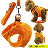 Soft Adjustable Mesh Dog Puppy Cat Pet Vest Harness and Leash Set for Dogs Cats Pets (A, Orange)