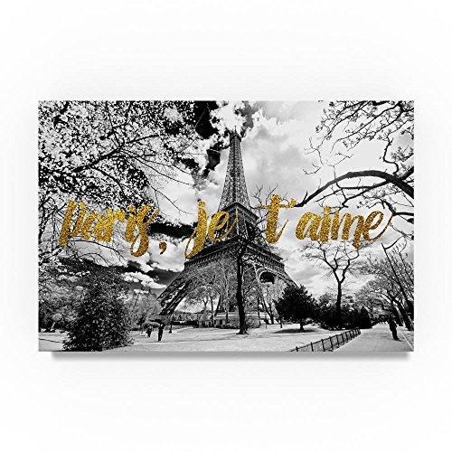 Trademark Fine Art Paris je taime Eiffel Tower by Philippe Hugonnard, 22x32-Inch Canvas Wall Art