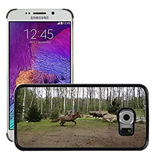 Hot Style Cell Phone PC Hard Case Cover // M00114654 Fuchs Forest Animal // Samsung Galaxy S6 EDGE (Not Fits S6)