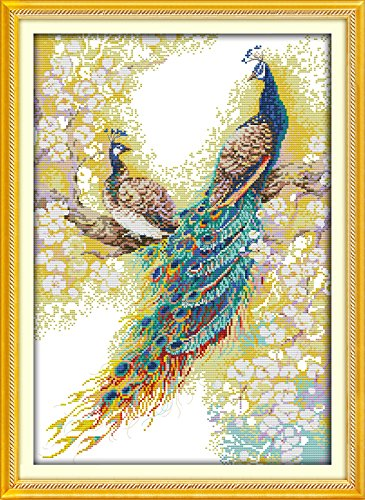 Cross Stitch Embroidery Starter Kit including 14 Count 14x20 classic reserve Aida colored threads and tools Peacock Lover No Frame