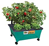 EMSCO Group Little Pickers Raised Bed Children's Grow Box – Self Watering and Improved Aeration – Mobile Unit with Casters – Teaches Kids Gardening