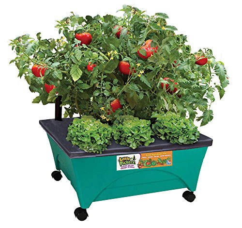 Emsco Group 2360 Little Pickers Raised Bed Children's Grow Box, Teal