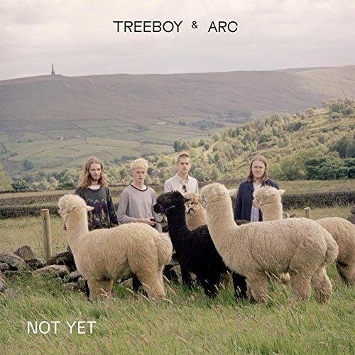 Vinilo : Treeboy & Arc - Not Yet / Merge (10-Inch Vinyl, United Kingdom - Import)