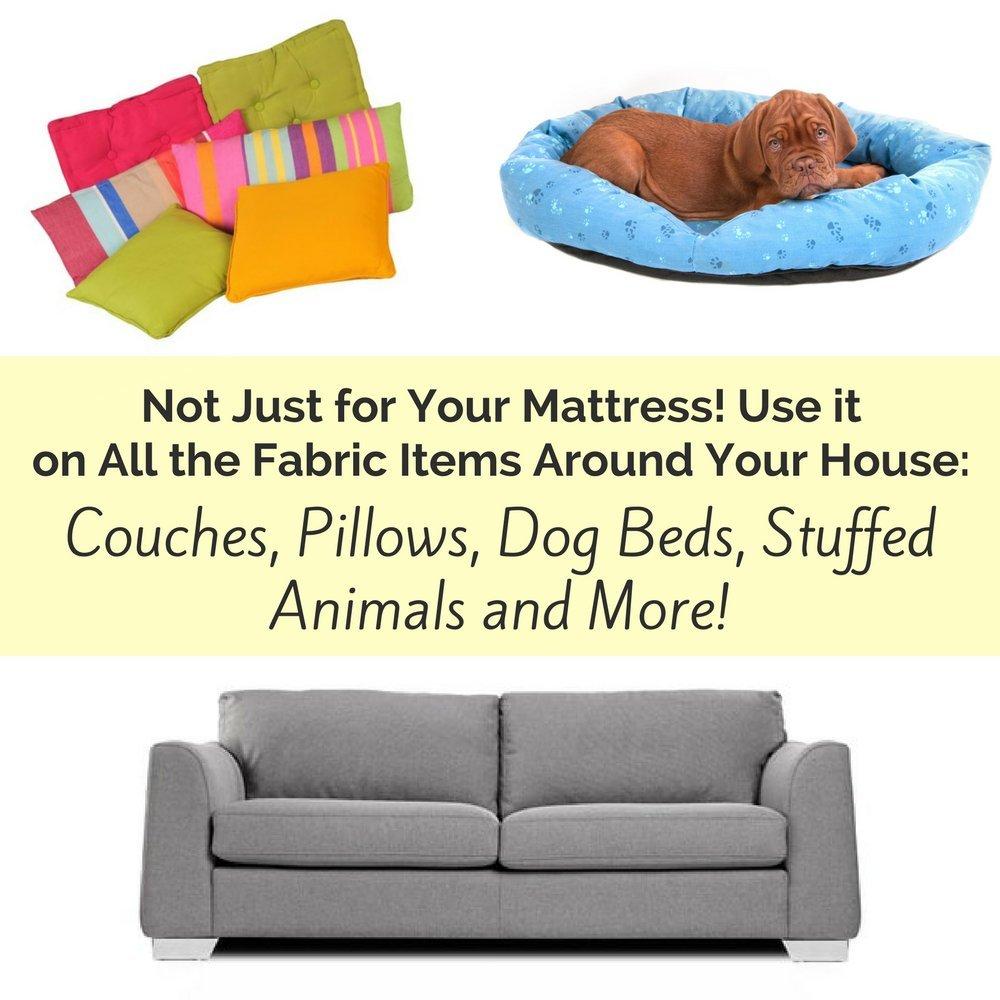 Amazon.com: PREMIUM colchón & tela Cleaner. La mejor ...