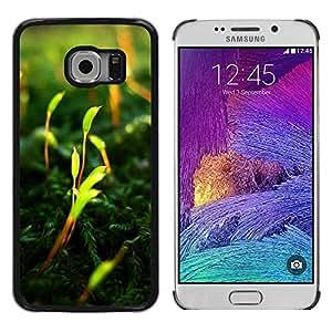 LECELL -- Funda protectora / Cubierta / Piel For Samsung Galaxy S6 EDGE SM-G925 -- Vibrant --