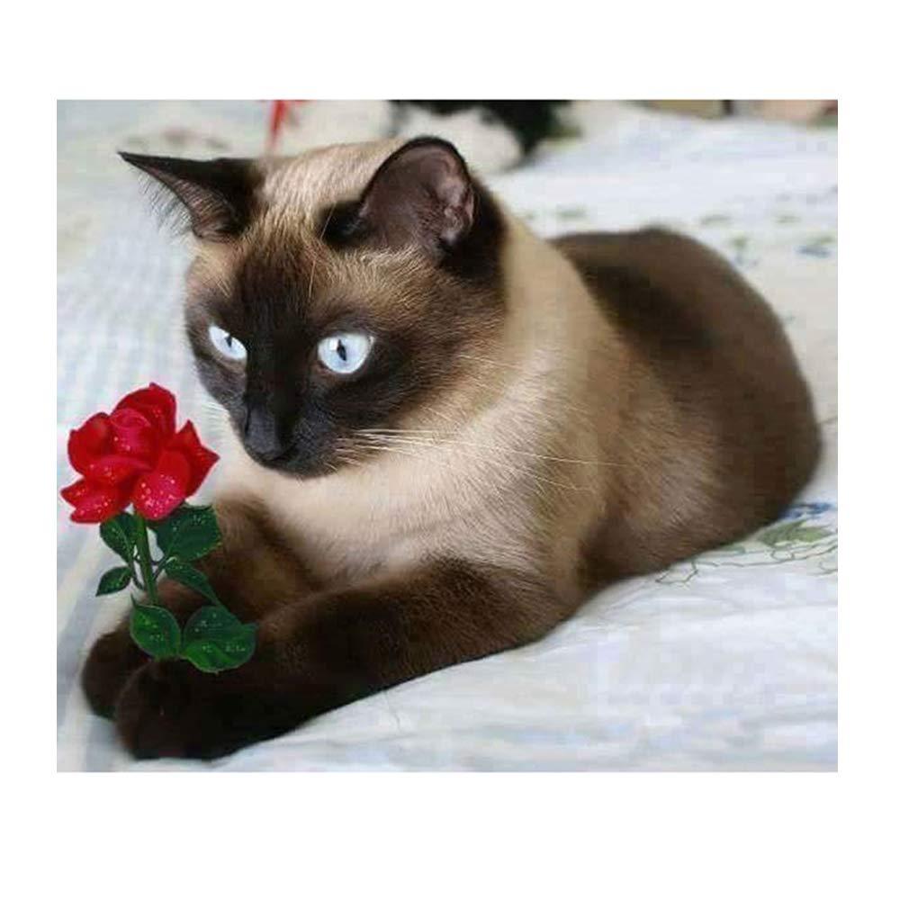 5D Diamond Painting Siamese Cat Kit