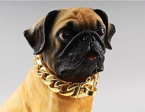 Collares Básicos Collar De Cadena De Perro De Acero ...