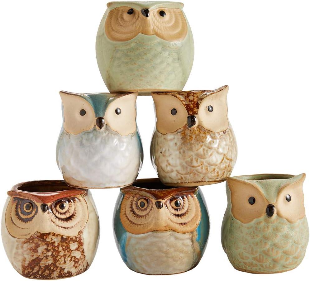 Sun-E 2.5 Inch Owl Pot