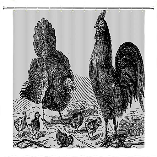 SATVSHOP Shower Curtain Decor by-with Hooks Bath Curtain Waterproof-Gallos Hen ooster and Chicks Classical La Vie Dans La Nature 1890 Antique Drawing Effect Artwork.W60 x L72 inch
