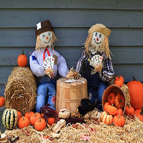 GladsBuy Cute Scarecrows 10' x 10' Computer Printed Photography Backdrop Bumper Harvest Theme Background LMG-100 ()