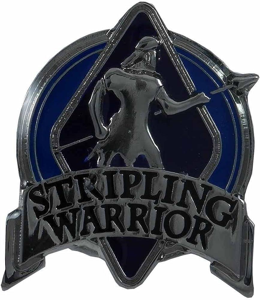 Johnson Brothers Stripling Warrior Pin