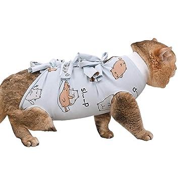 Amazon.com: Stock Show traje de recuperación para gatos ...