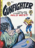 Gunfighter Volume 1 (EC Library)
