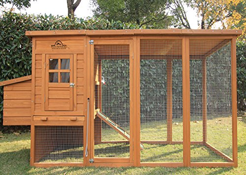 chicken coop for 8 chickens - 2