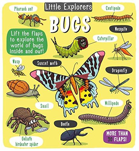 (Little Explorers: Bugs)