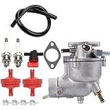Amazon com : HQ parts Manual Carburetor & Fuel Filter for