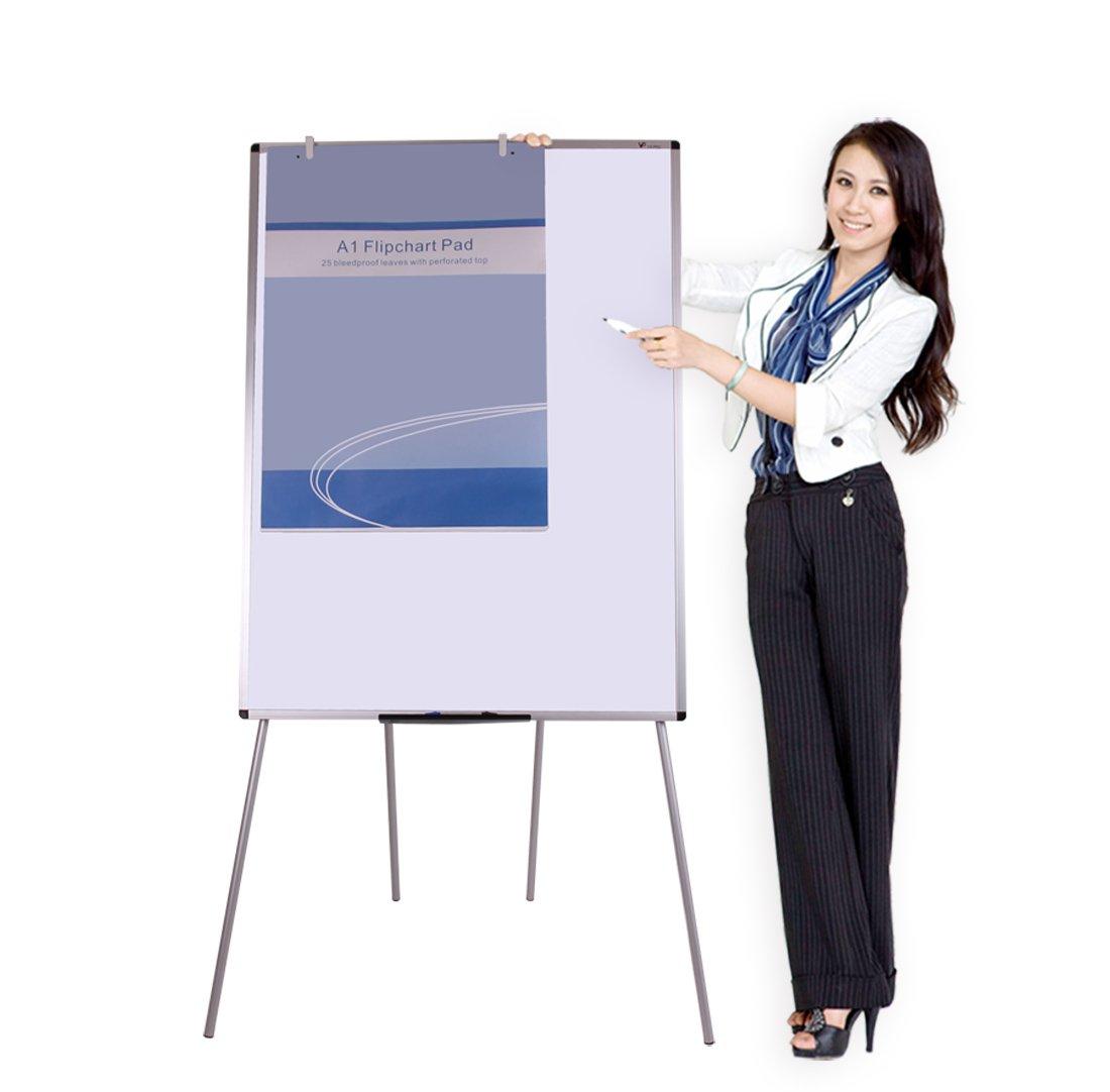 VIZ-PRO Light Magnetic Four Legs Stand Whiteboard/Flipchart Easel,48'' W x 60'' L