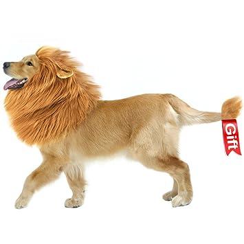 Perro León crin, mascotas León crin Lion Perros peluca, ropa bufandas Disfraz perro para