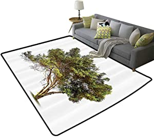 Lush Decor Soft Rug Ancient Tree with Wide Branches Growth Forest Jungle Woods Garden Framework Relieve Foot Pressure Green Brown, 5'x 8'(150x240cm)