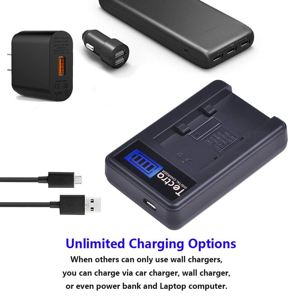 Tectra 2Packs NP-FV50 Battery Charger Kits for Sony NP-FV30 NP-FV40 NP-FV50 NP-FV70 NP-FV100 /& Sony Handycam HDR-CX380 430V 900 580V 760V HDR-PJ540 650V HDR-PV710V 790V 810 HDR-TD30V FDR-AX100 DCR-S