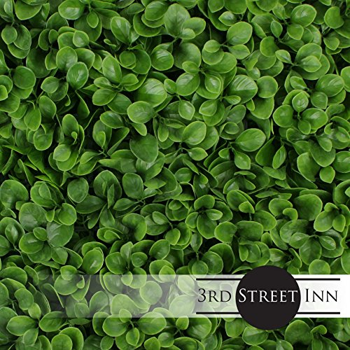 Artificial Hedge - Outdoor Artificial Plant - Great Boxwood and Ivy Substitute - Sound Diffuser Privacy Fence Hedge - Topiary Greenery Panels (12, Jasper) by 3rd Street Inn