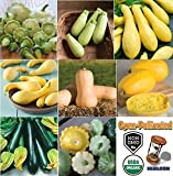 David's Garden Seeds Collection Set Squash NEP9977 (Multi) 8 Varieties 300 Plus Seeds (Open Pollinated, Heirloom, Organic)
