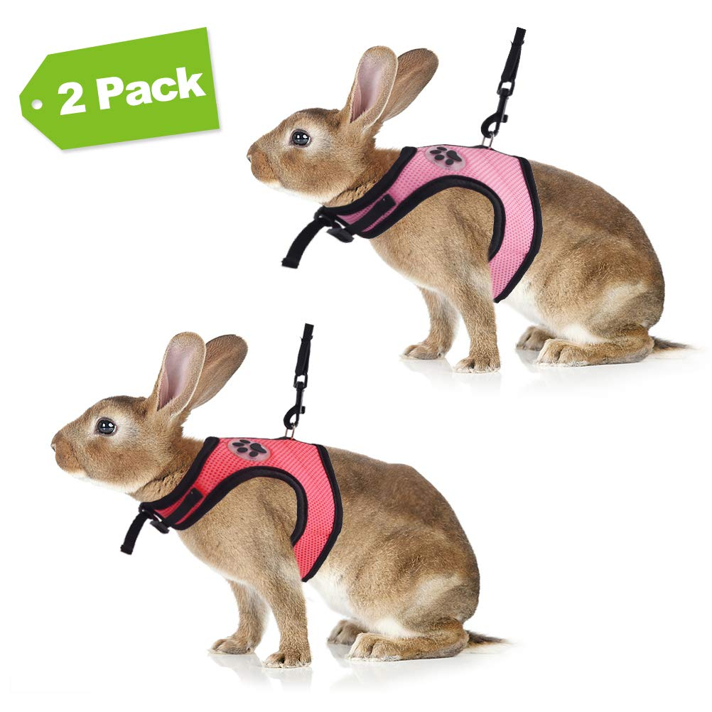 EXPAWLORER 2 Pack Rabbit Harness with Stretchy Leash - Adjustable Buckle Breathable Mesh for Small Pets Walking, Red and Pink by EXPAWLORER