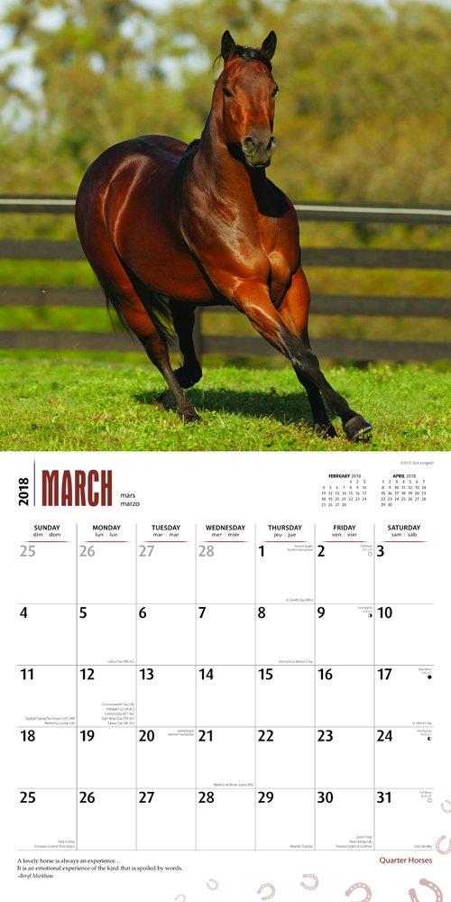The Horse 2018 Calendar