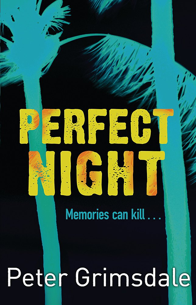 Download Perfect Night pdf epub