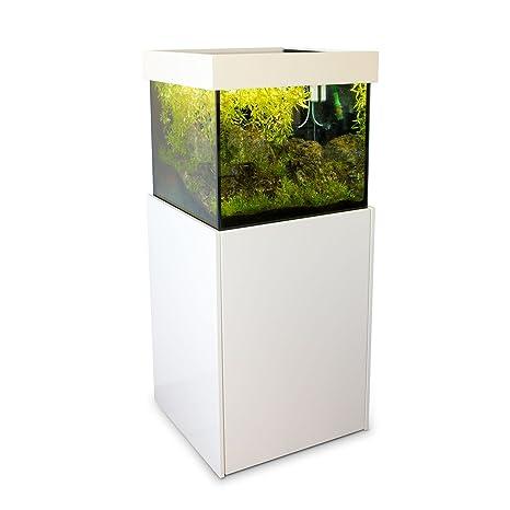 AXP erto Diseño de Acuario 60 x 60 x 57 Blanco Como Agua Mar y agua ...